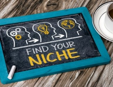 Select a Profitable Niche